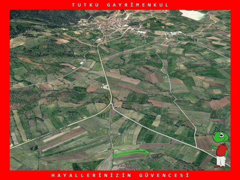 KORUCU'DA YATIRIMLIK 4.495 M2 TARLA – TUTKU GAYRİMENKUL