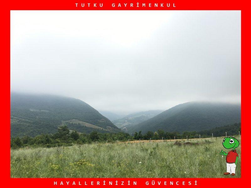 KAYTAZDERE'DE DENİZ VE DOĞA MANZARALI 460 M2 ARSA – TUTKU GAYRİMENKUL