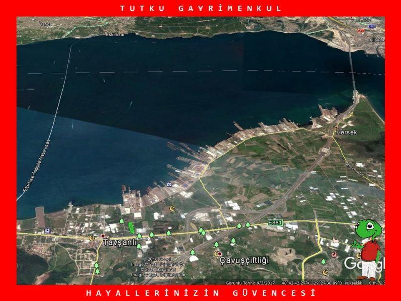 TAVŞANLI'DA 272 M2 TARLA – TUTKU GAYRİMENKUL
