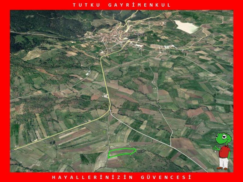 KORUCU'DA YATIRIMLIK 14.385 M2 TARLA – TUTKU GAYRİMENKUL