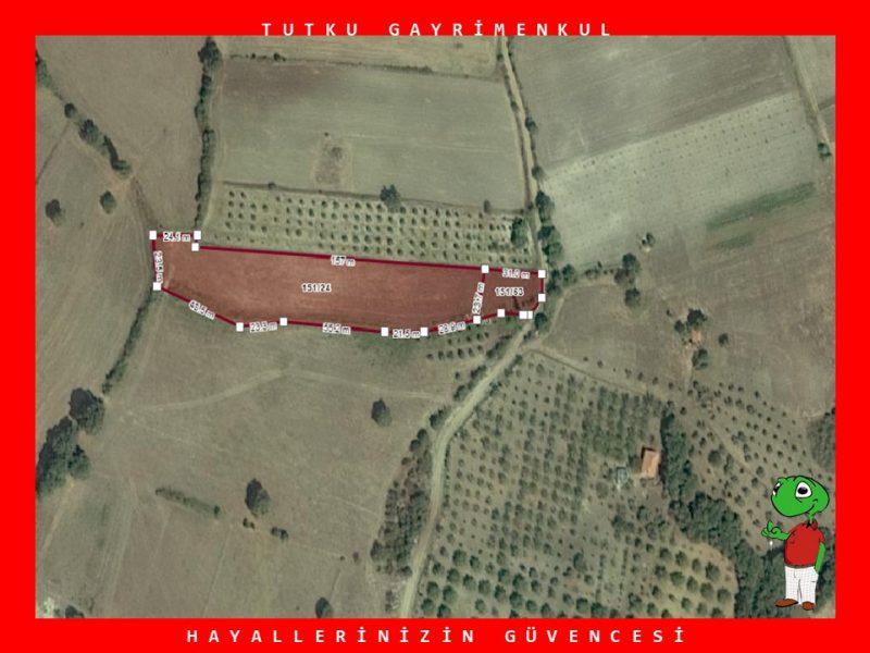 SAVAŞTEPE'DE RESMİ KADASTRO YOLUNA CEPHE 6.082 M2 TARLA – TUTKU
