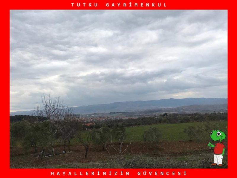 SAVAŞTEPE'DE ŞEHİR MERKEZİNE YAKIN 4.618 M2 TARLA – TUTKU
