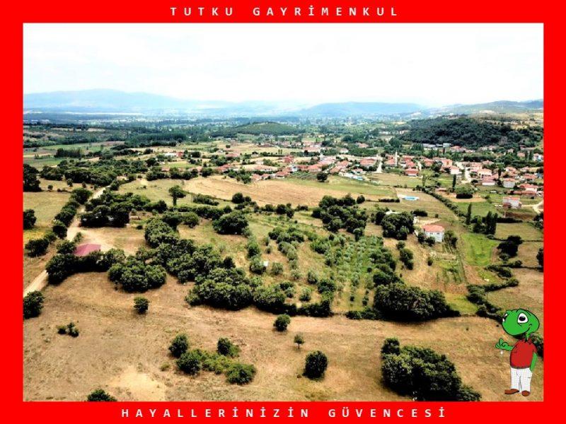 BALIKESİR SAVAŞTEPE SARIBEYLER'DE 3733 m² SATILIK TARLA