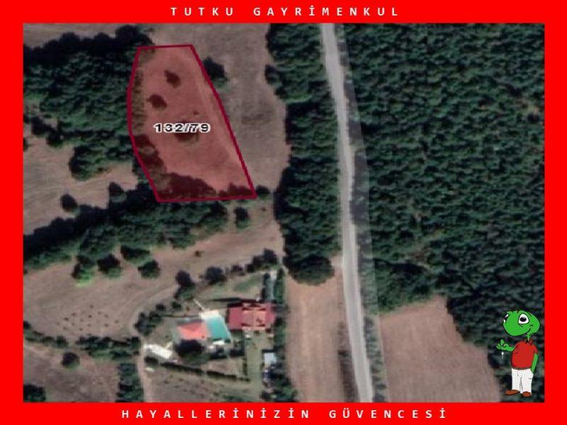 YALOVA ALTINOVA FEVZİYE KÖYÜN'DE 3.180 m² TARLA