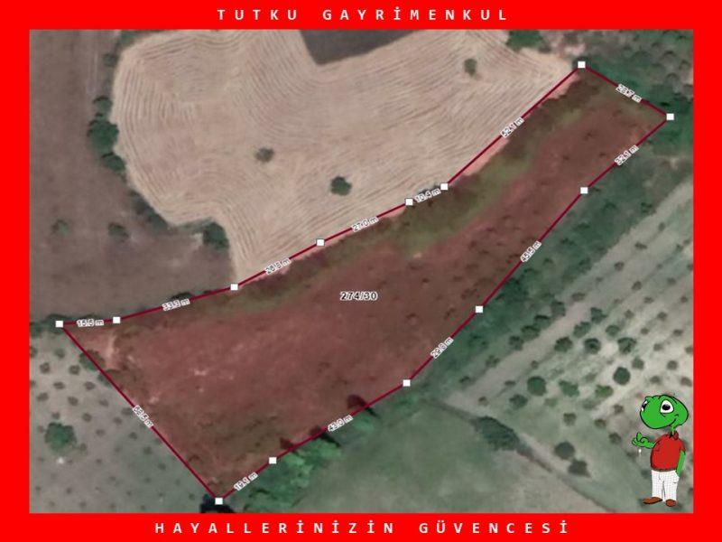BALIKESİR SAVAŞTEPE'DE 6.752 m² SATILIK TARLA